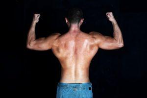 Muscoli della schiena allenati con pulley basso
